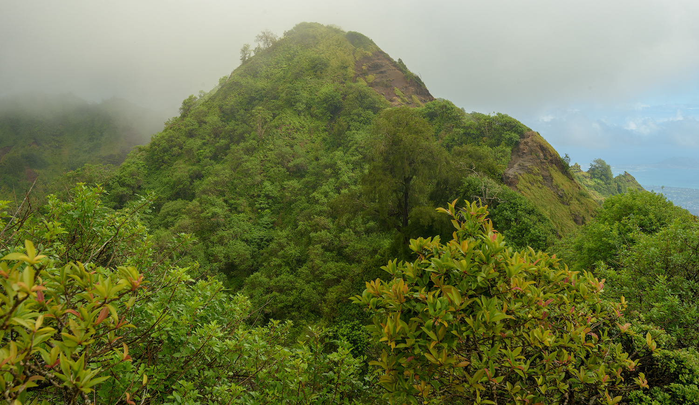 BTP_Kuliouou_Ridge_Trail-121.jpg
