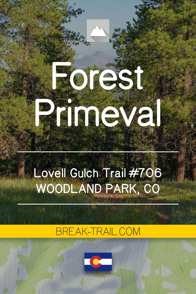 Pinterest Pin for Lovell Gulch Trail No 706