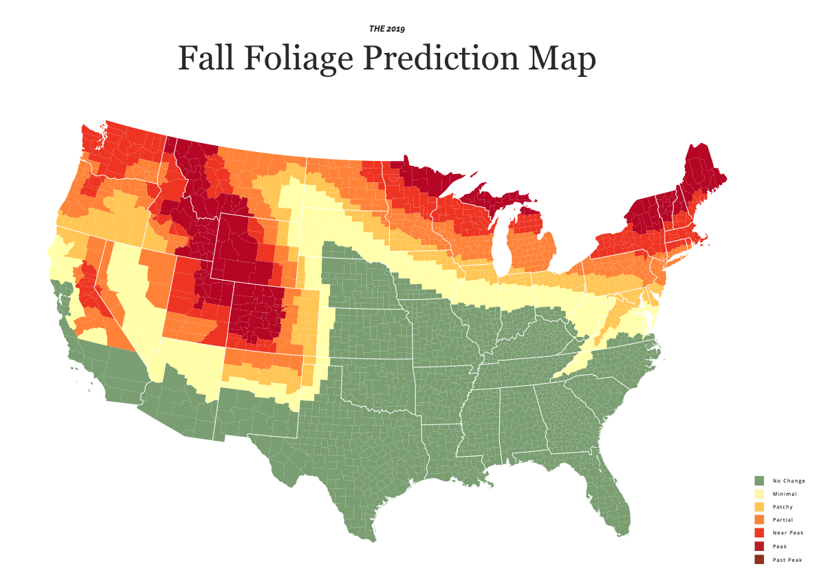 SmokyMountains.com 2019 Fall Foliage Prediction Map