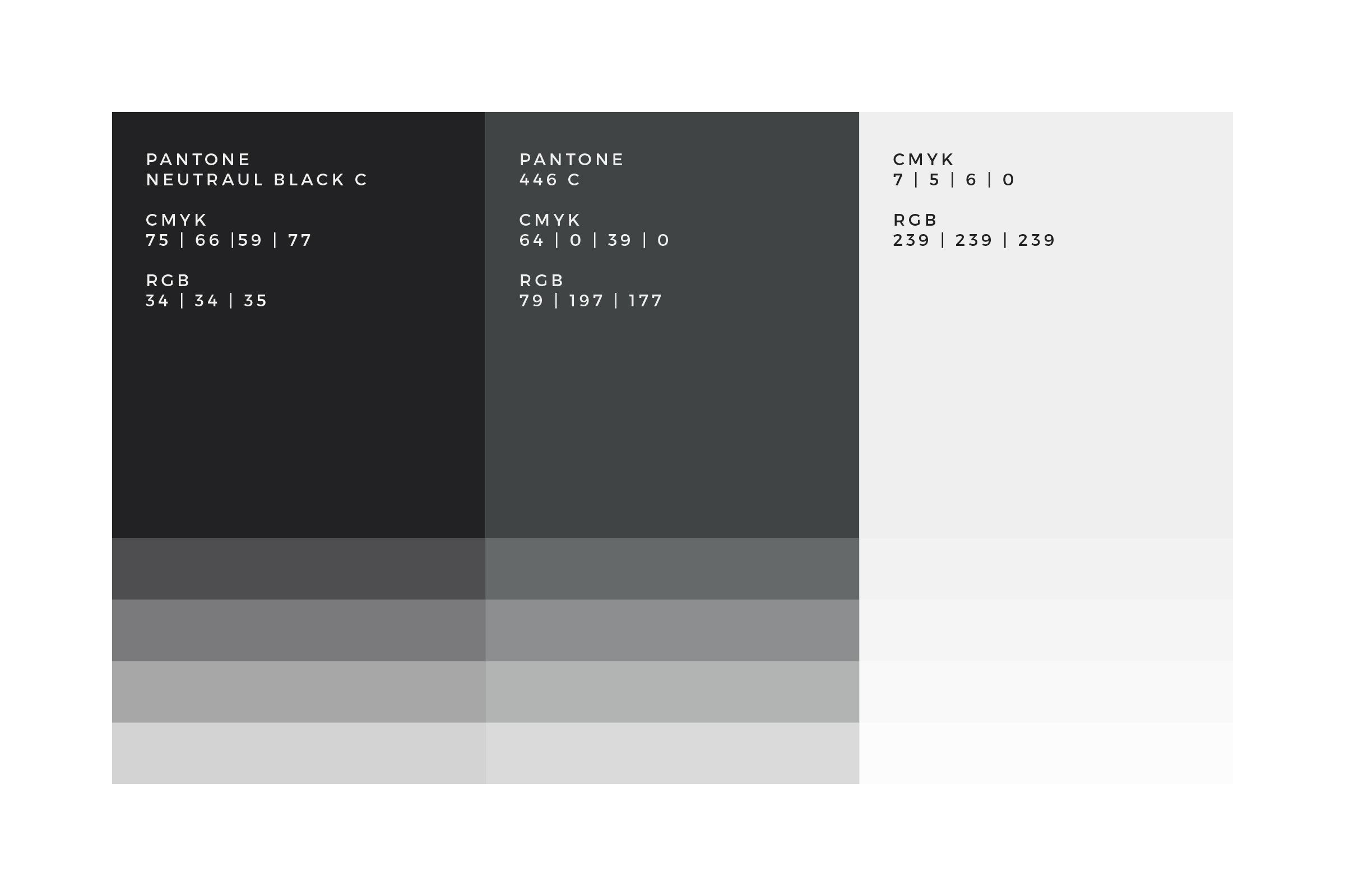 Monotone Colour Palette
