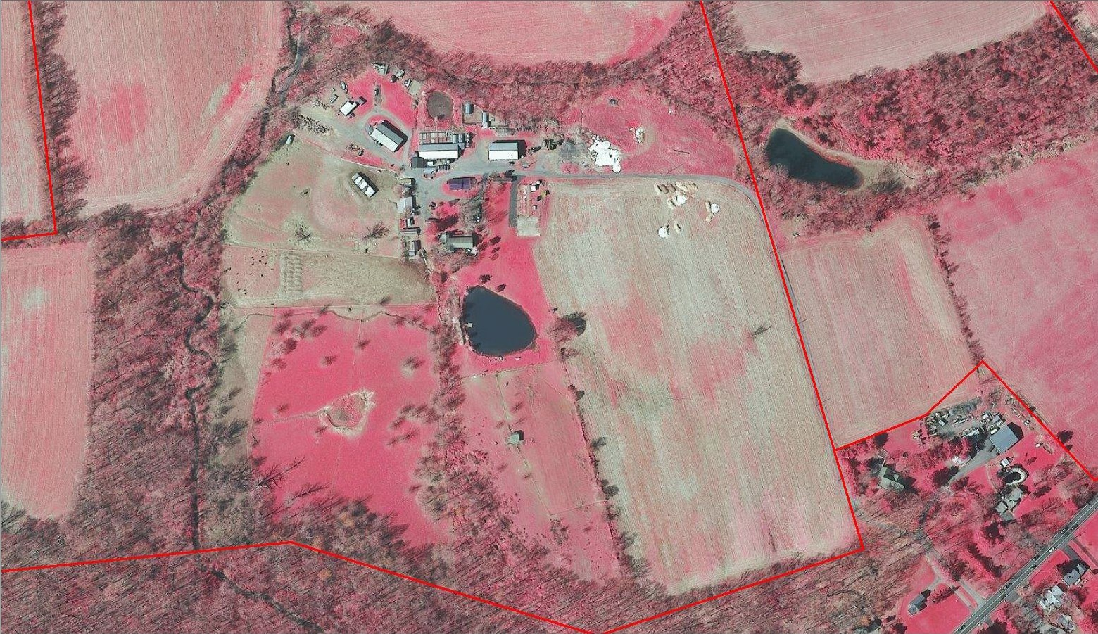 Features such as streams and dirt roads are more easily defined under infrared imagery.