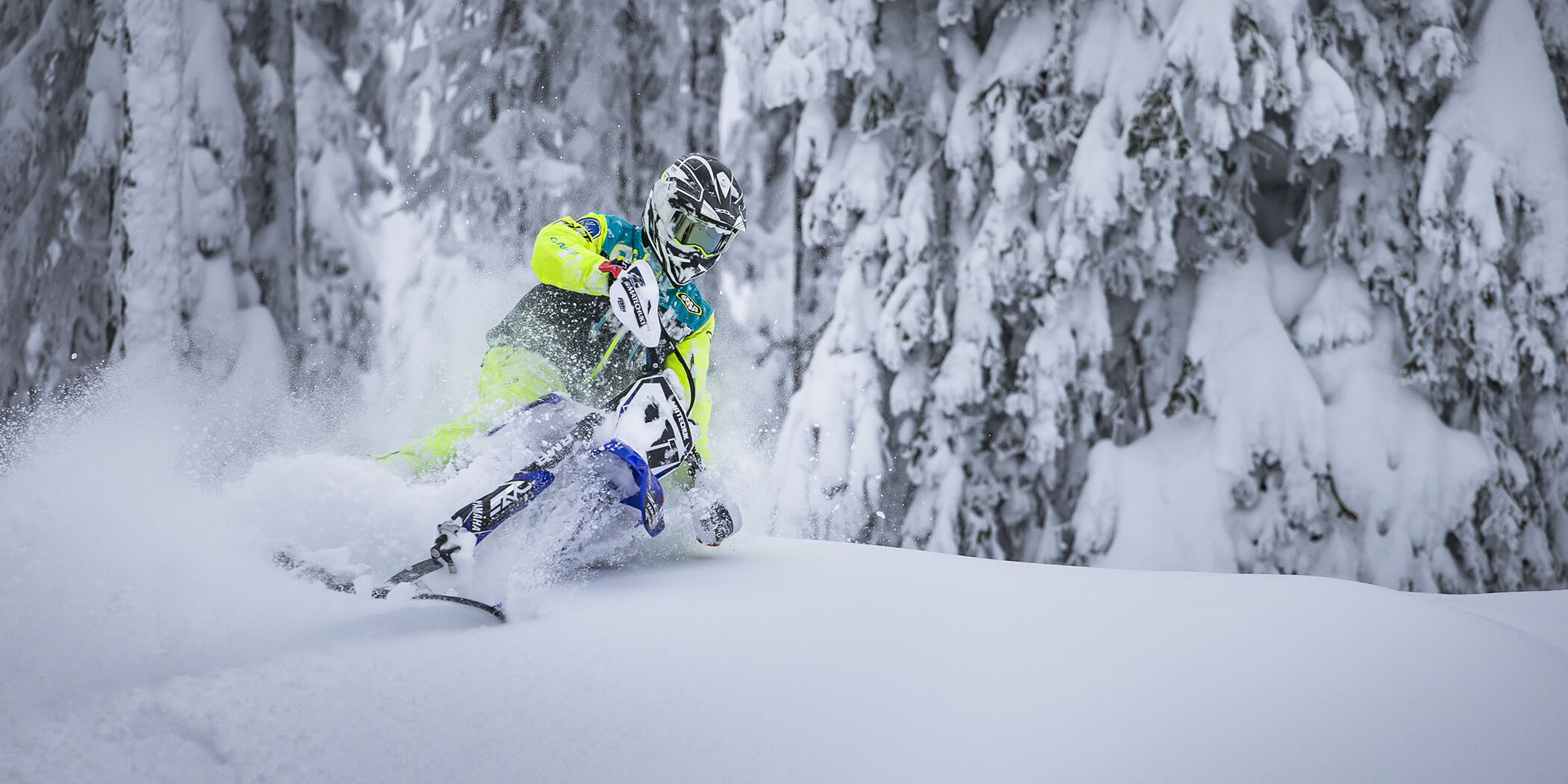 PLAY IN THE POWDER