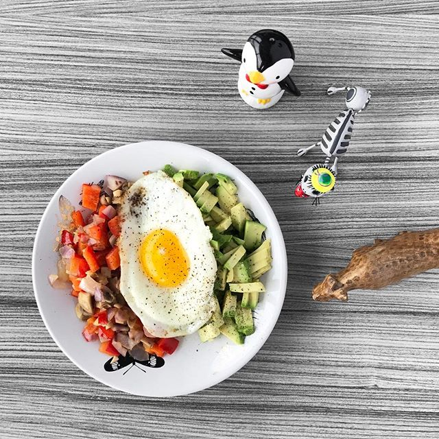 """When people ask me if I have anyone helping me with this blog... 😳 #justus . Meet the SugarFree Committee ---  we spend most of our time staring at food, unable to eat it. """"Wait! I need to take the photo first!"""" """"Awww, come on!"""" 😡 ➙ ➙ ➙ [ Easy breakfast recipe: From the left: chopped red onion + bell peppers + mushrooms cooked in a skillet with @vitalfarms butter until the onions are translucent ---  middle: 1 overeasy @vitalfarms egg ---  Right side: sliced avocado ] #healthybreakfast #sugarfreerecipes 💪🏻"""