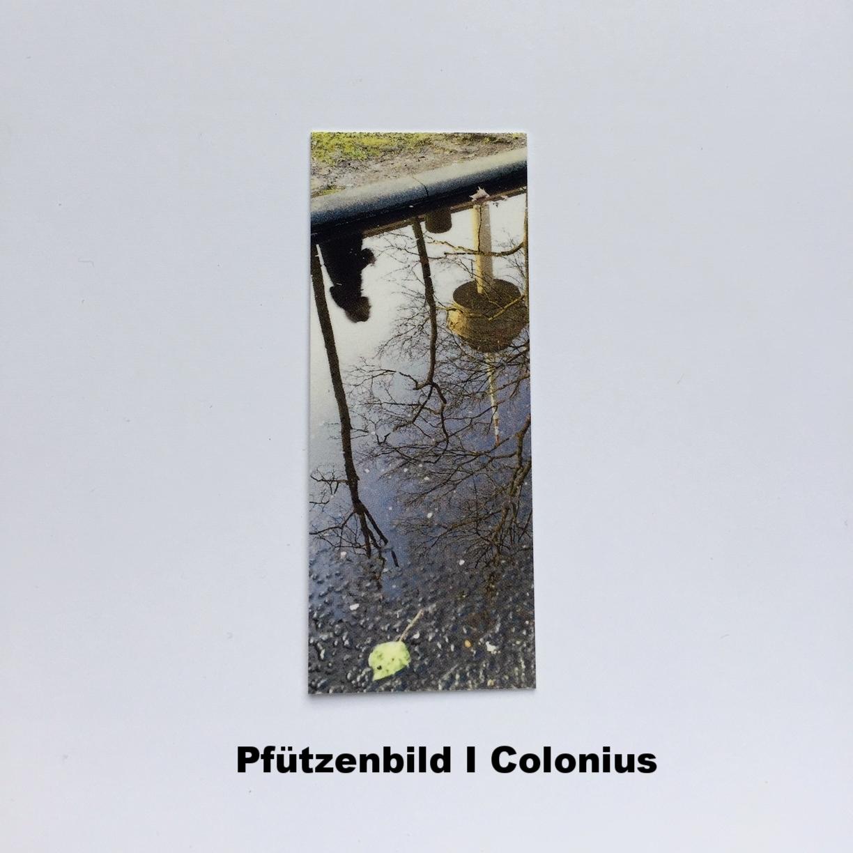 PfützenBild Colonius.JPG