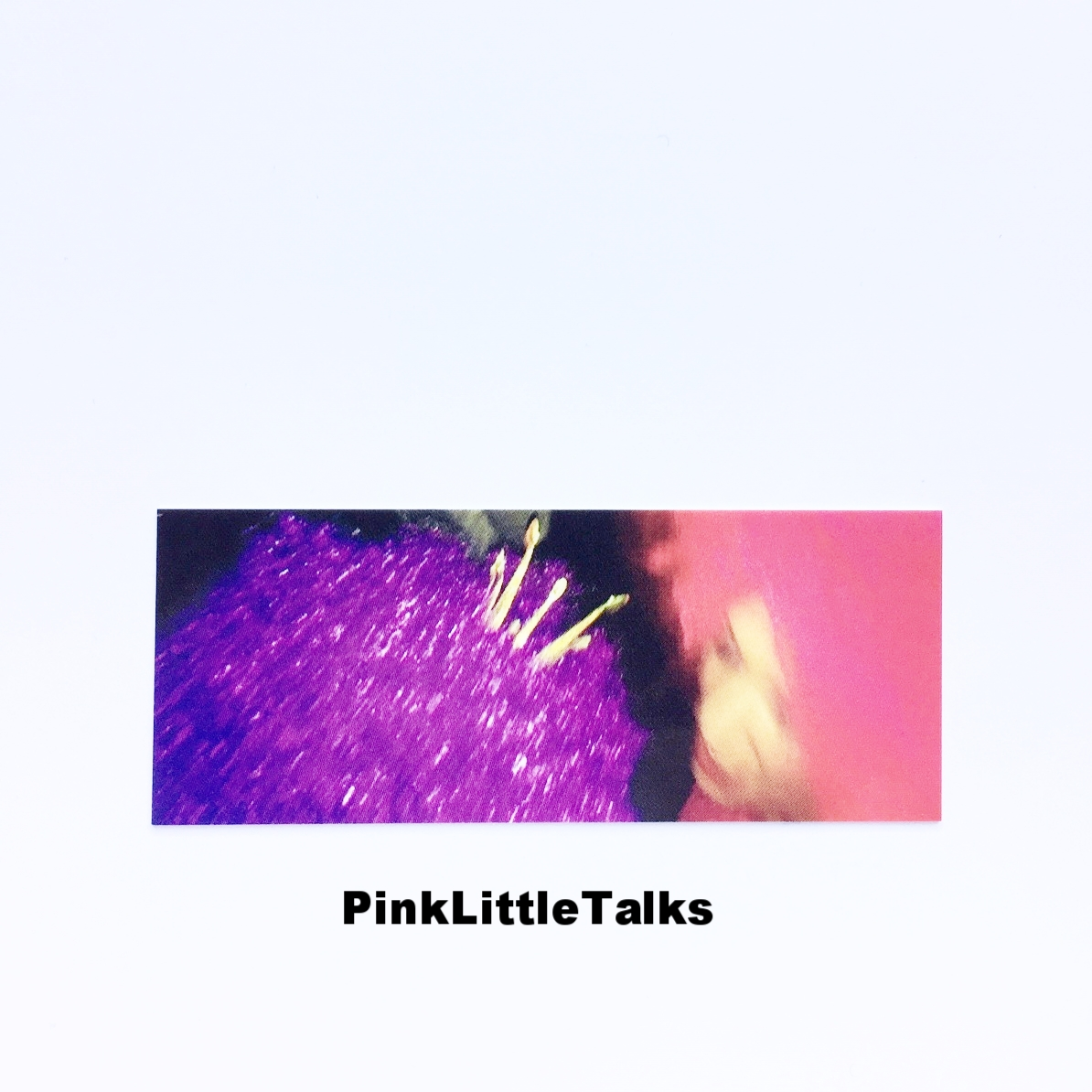 PinkLittleTalks.JPG