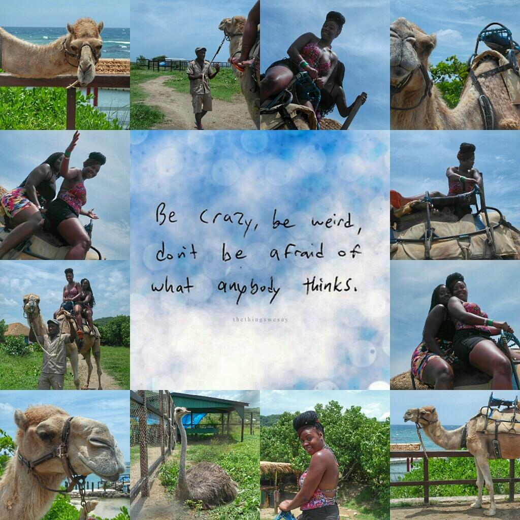 Camel ride in JA-01.jpg