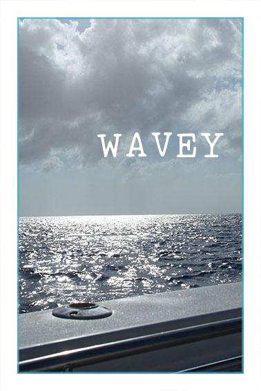 Wavey Love Keewi About Us.jpg