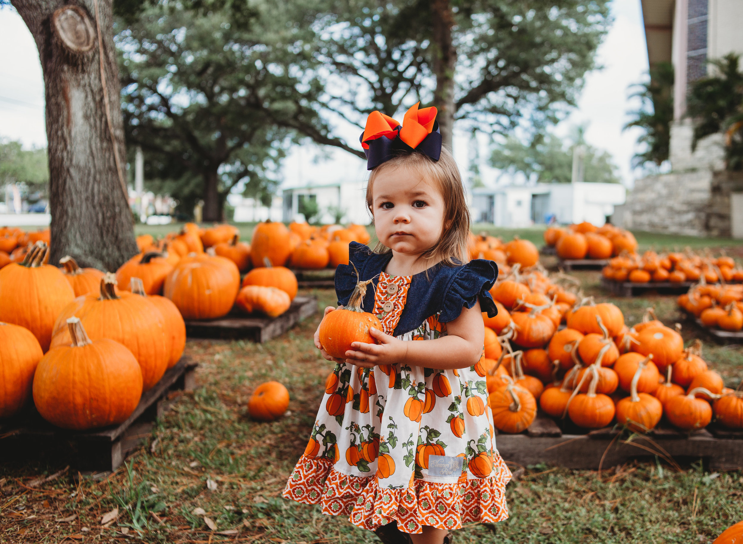 Shafferpumpkinpatch2017-13.jpg