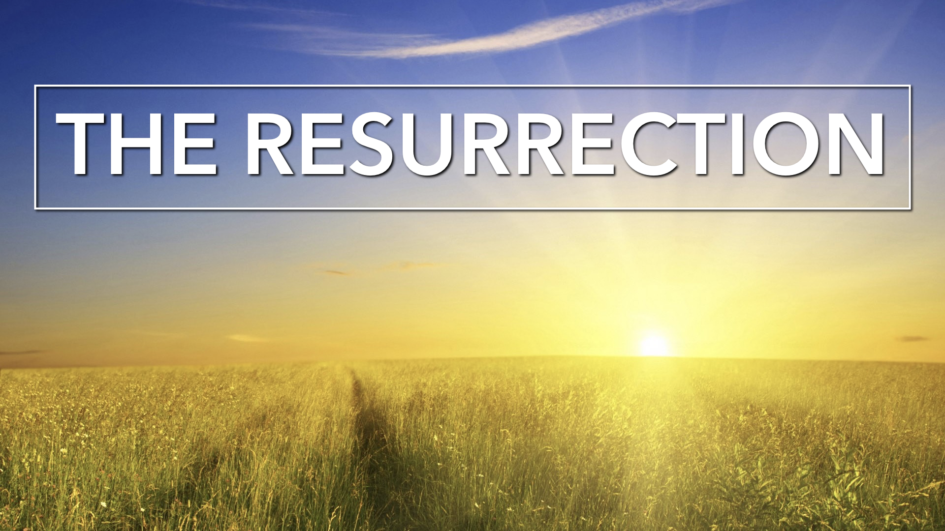JOHN 20.EASTER-2019 (The Resurrection).007.png