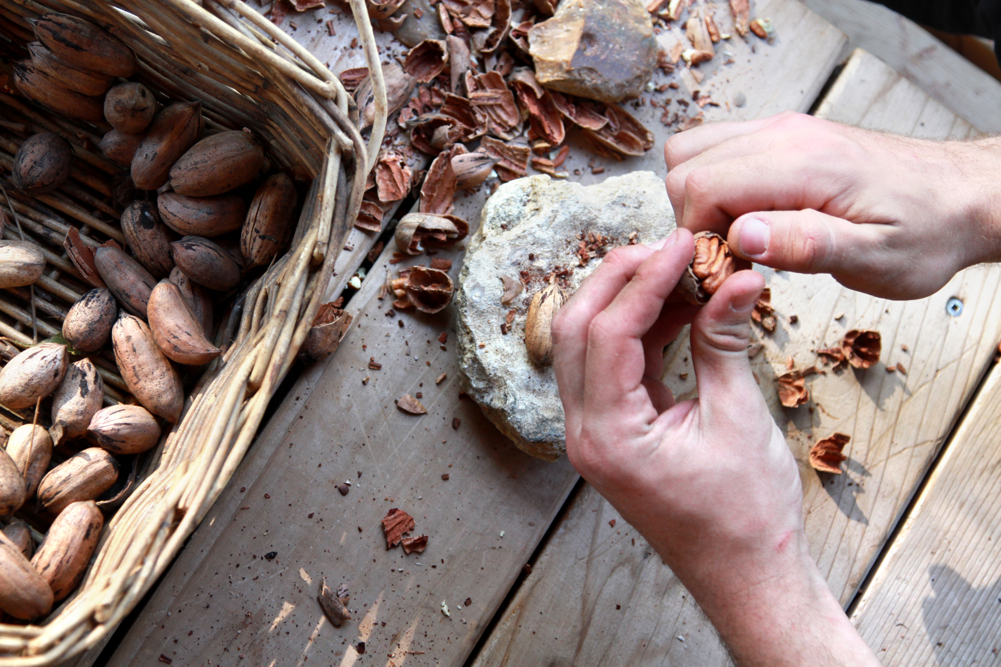 texas-pecans-lifestyle-photo.jpg