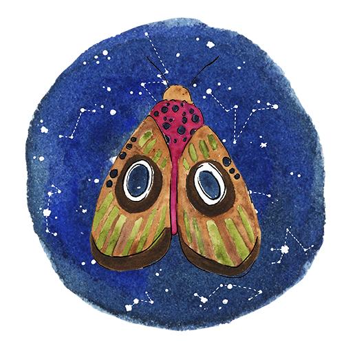 Watercolor Moth on a Galaxy Night Sky
