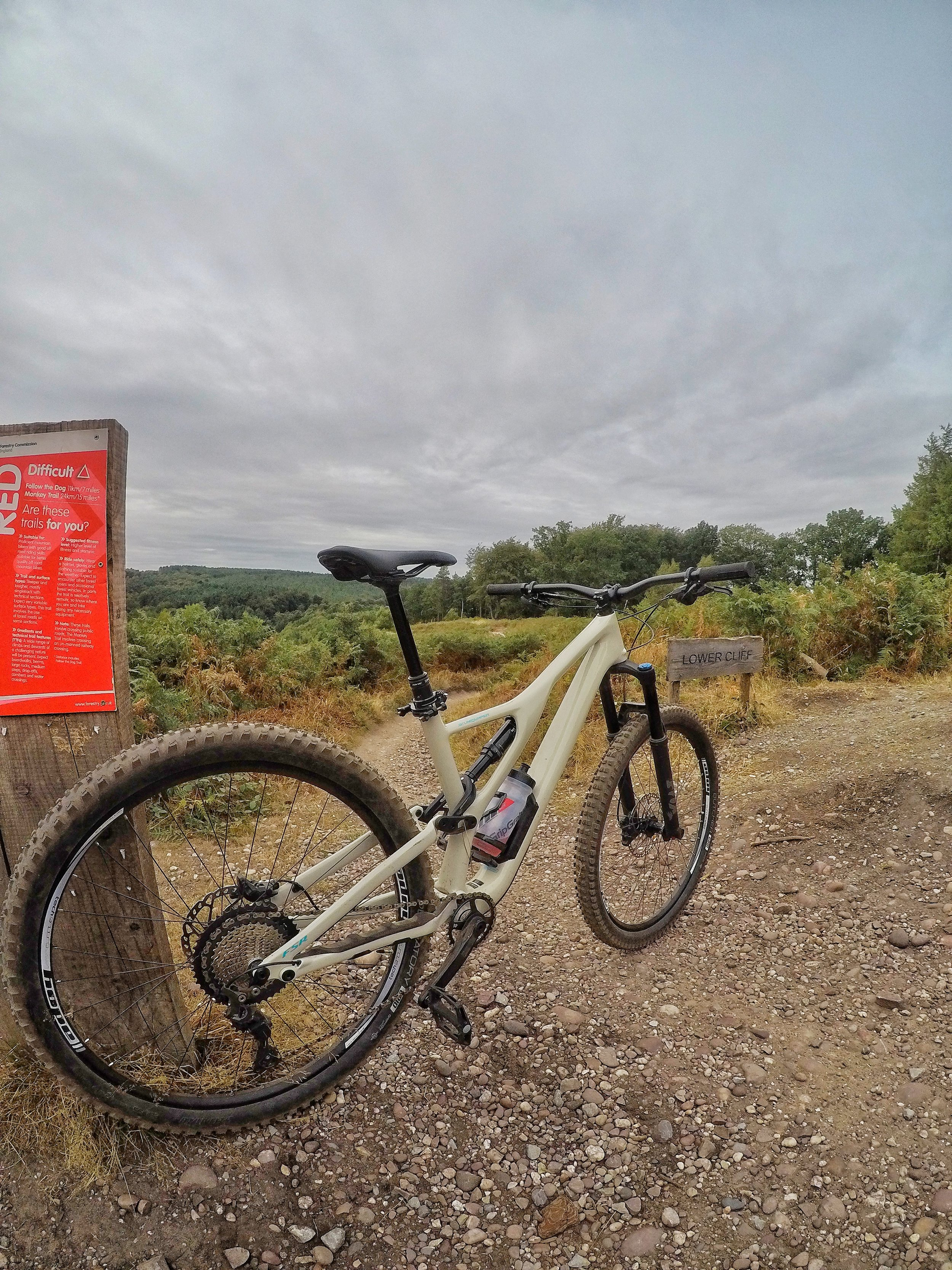 3 Things I love about my Stumpy! - Read More