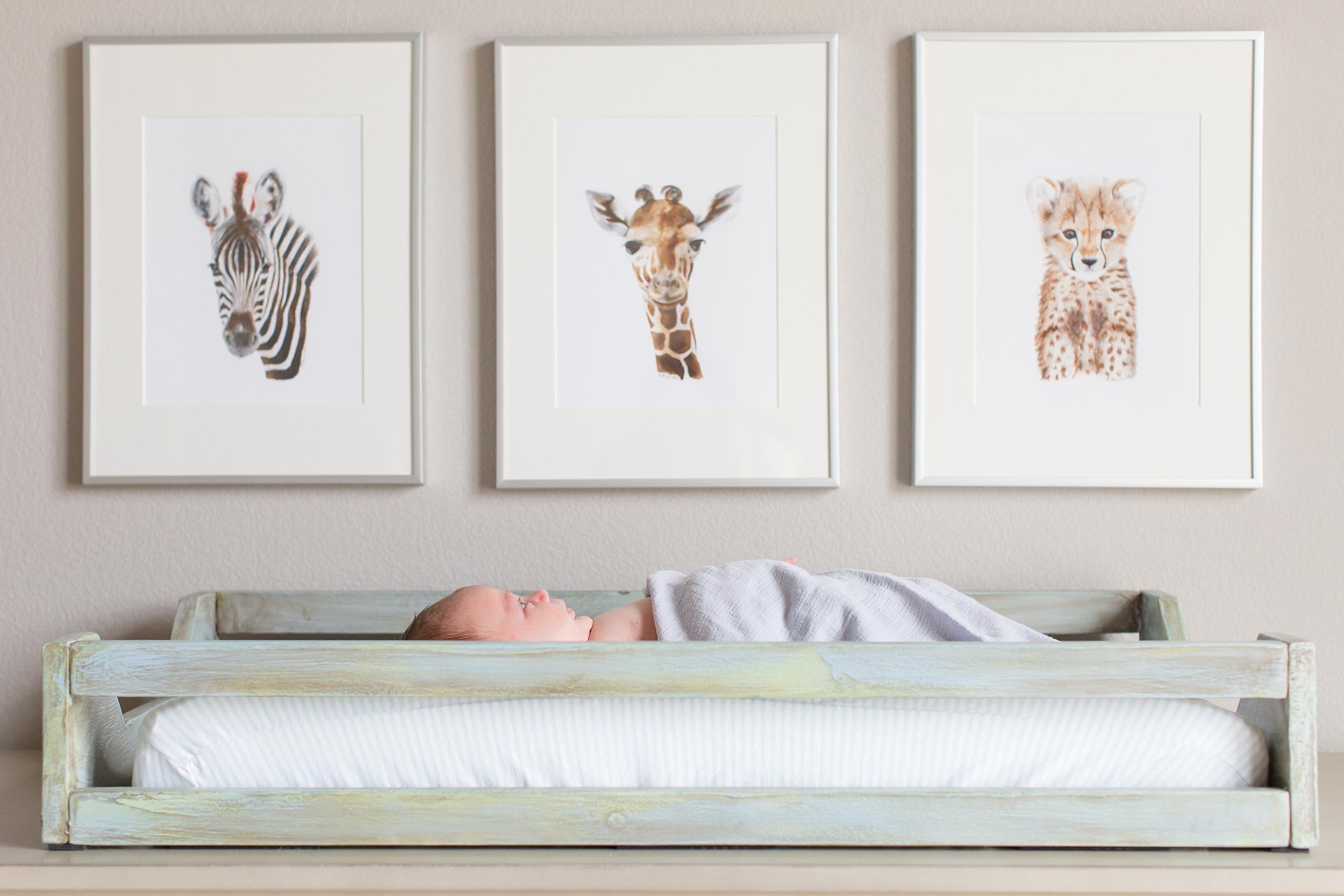 Landon-Schneider-Photography-Liverance-Newborn-Session-McKinney-Texas_0027.jpg