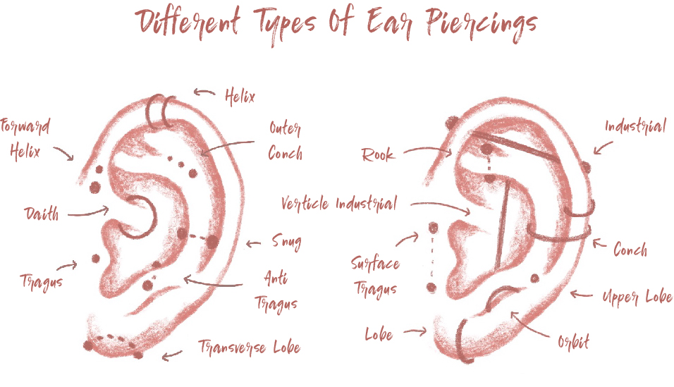 Ear-Piercing-Diagram[78595].jpg
