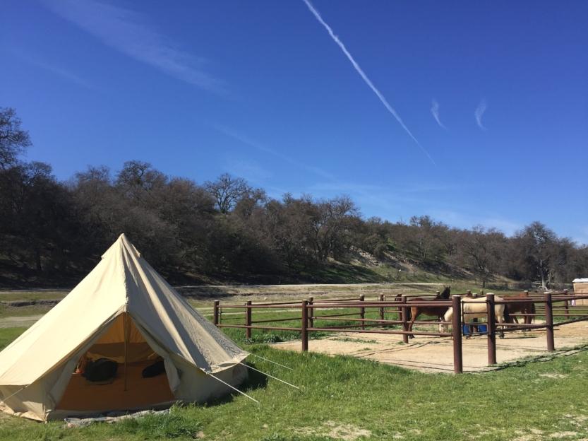 Horse camping at Lake San Antonio in the Spring!