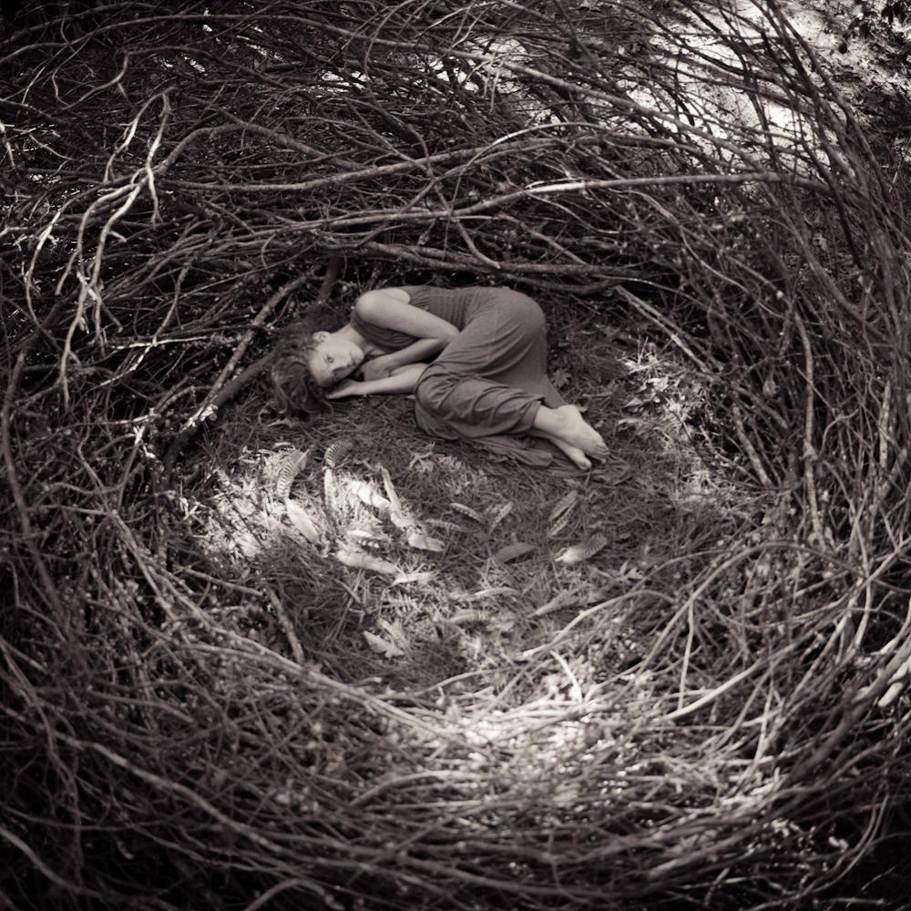 nest4haylei-4.jpg