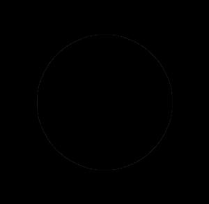 Plan B Circle Logo_black.png