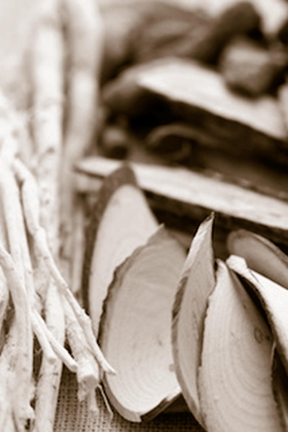 raw herbs sample 4x6.jpg