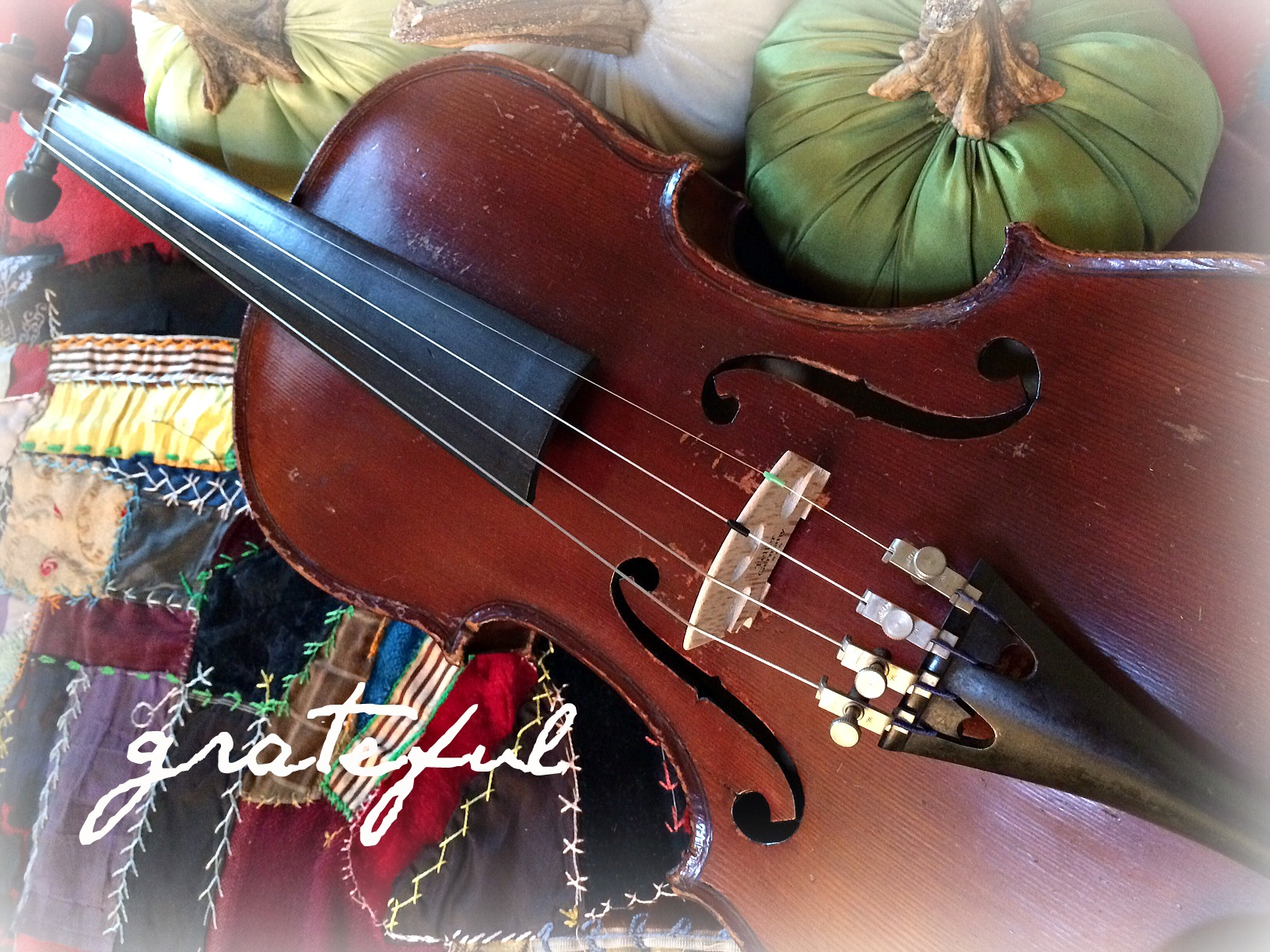 violin thanks2.jpg