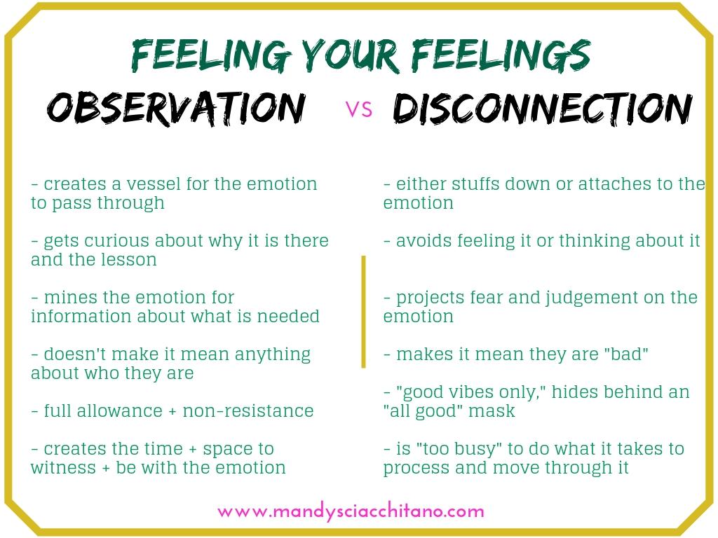 observation vs. disconnection.jpg