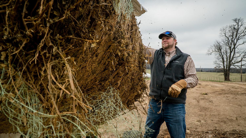 Andrew Ferguson detangles the netting around his alfalfa roll to feed his cattle through the vegetation-scarce winter months.
