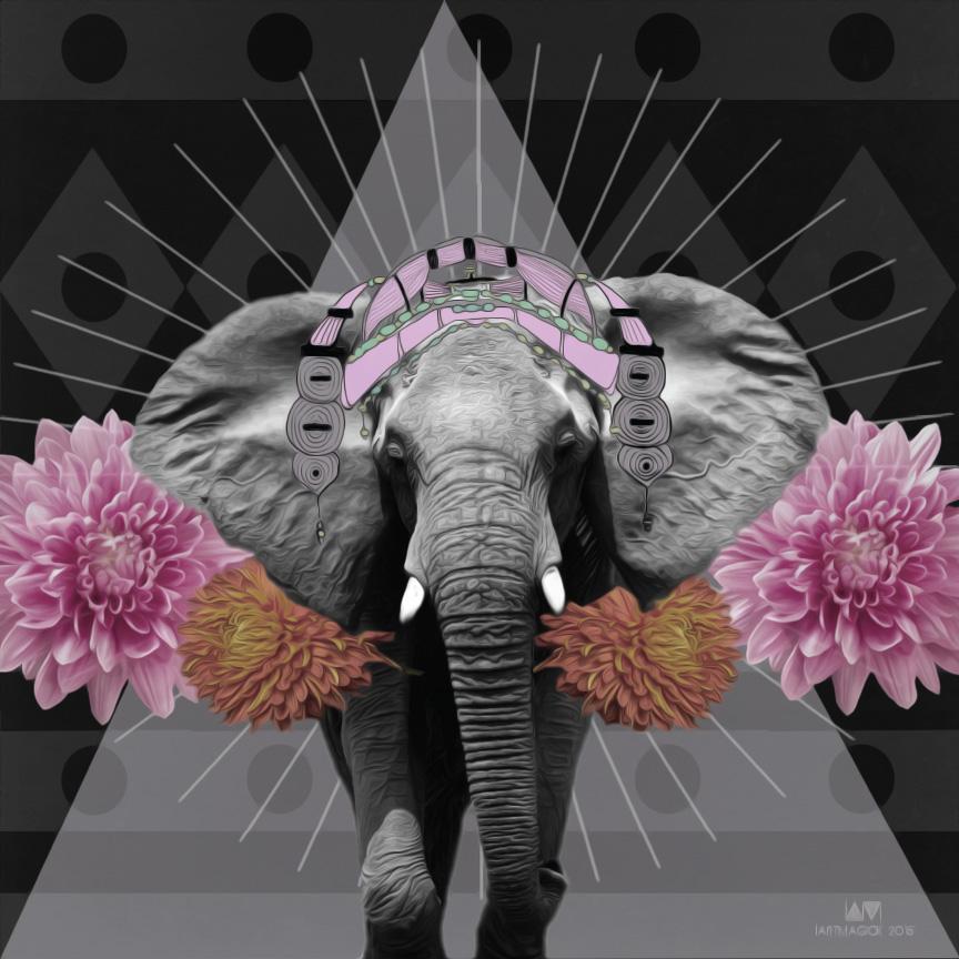 ELEPHANT-FORWEB.jpg