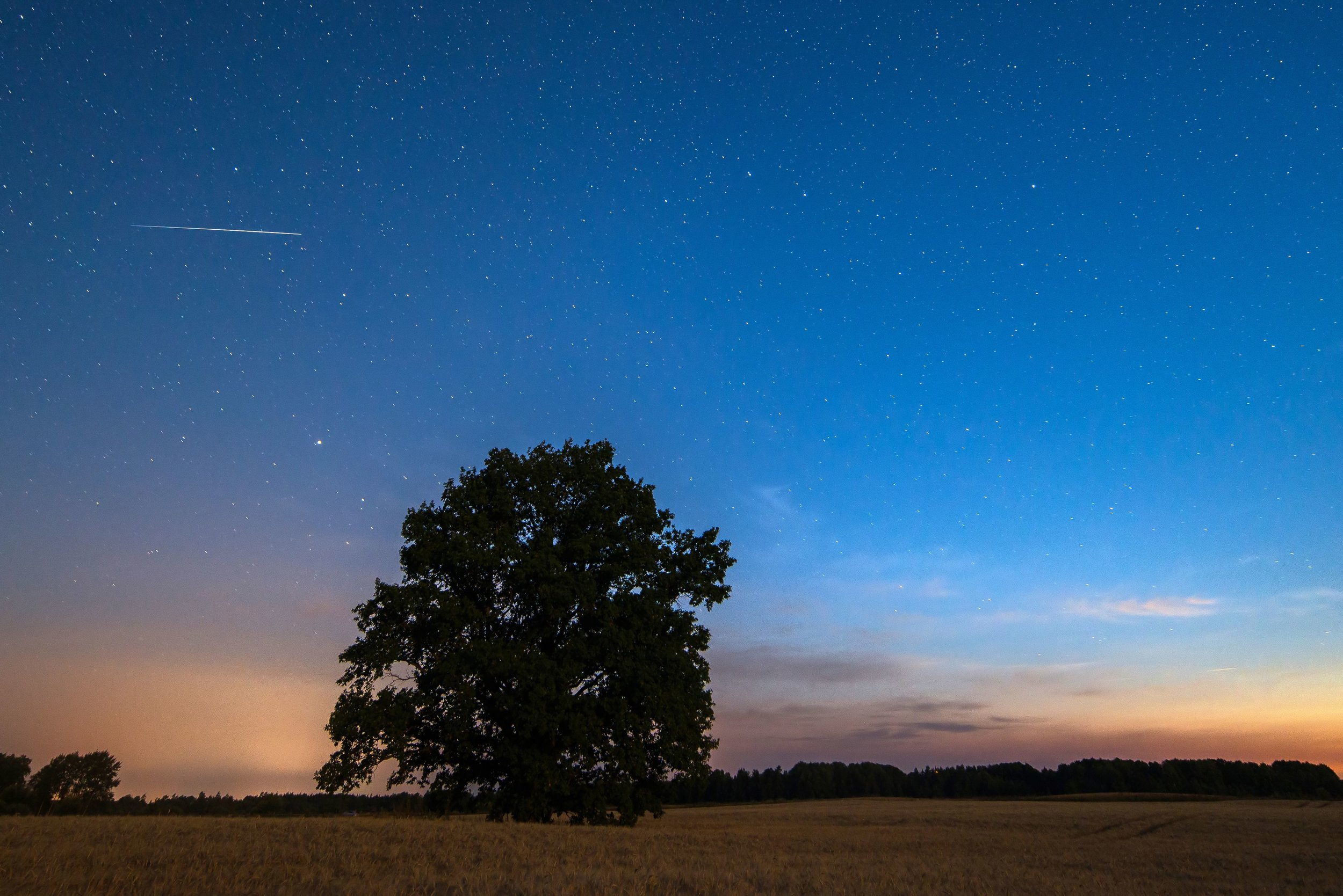 Iridium flare on a moonlit night in Võru County, Estonia; photo by Martin Mark via Wikimedia Commons.