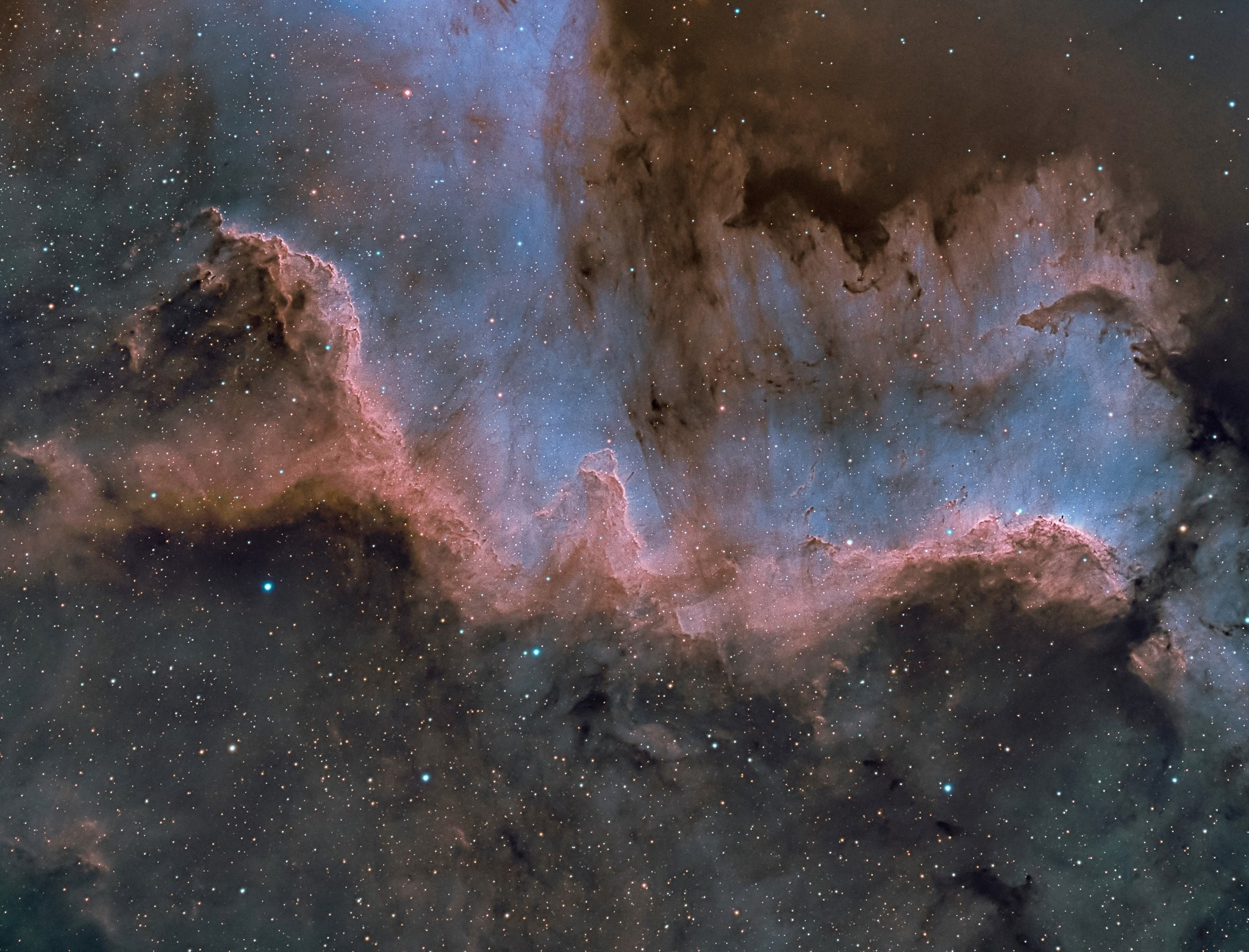 The Cygnus Wall, part of the North America Nebula (NGC 7000); photo by Chuck Ayoub.