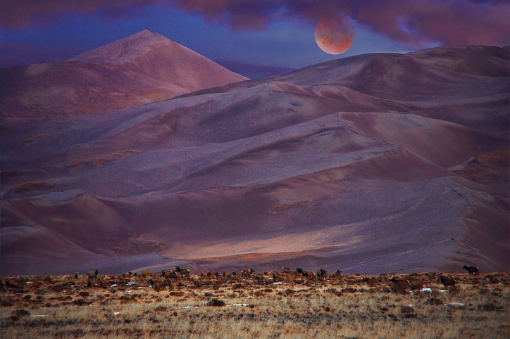 By Great Sand Dunes National Park and Preserve (Lunar Eclipse, Star Dune, and Elk) [Public domain], via Wikimedia Commons