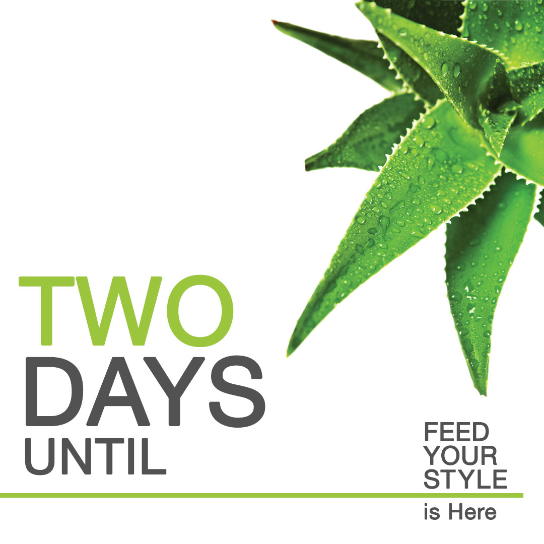 countdown-to-feed-your-style-2.jpg