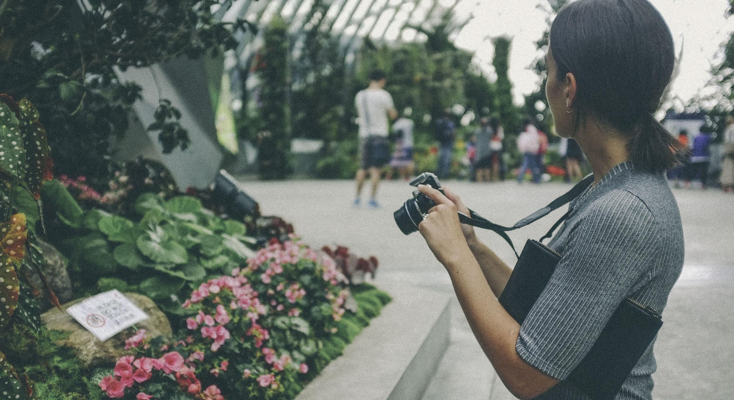 cloud forest, singapore - www.derrive.com