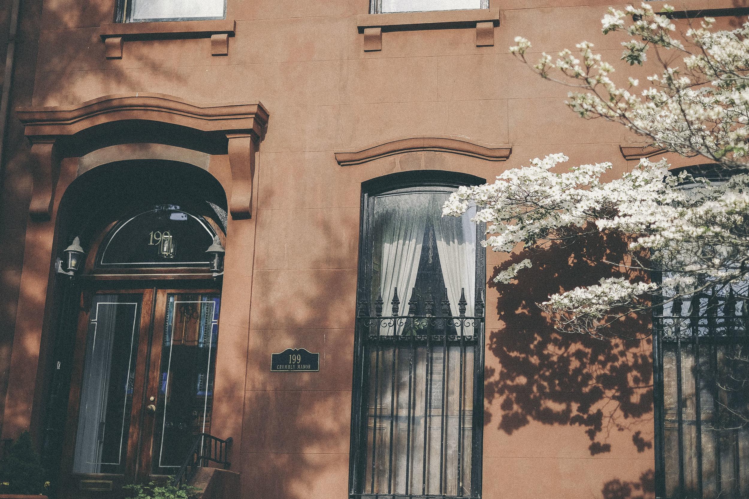 dérrive travel - BROOKLYN, new york #dumbo #newyork #nyc #brooklyn #cherryblossoms