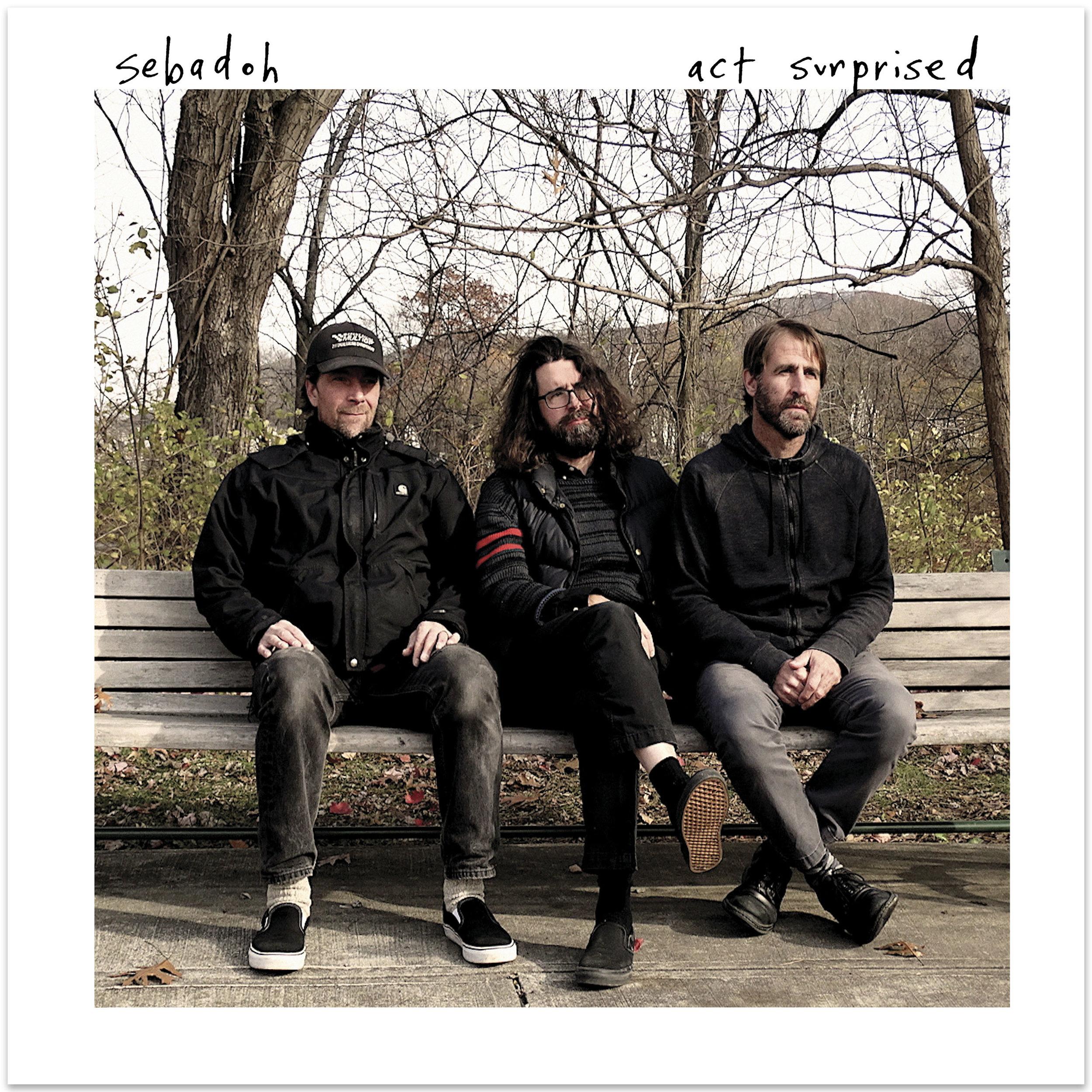 Sebadoh_Act Surprised_Album Cover.jpg