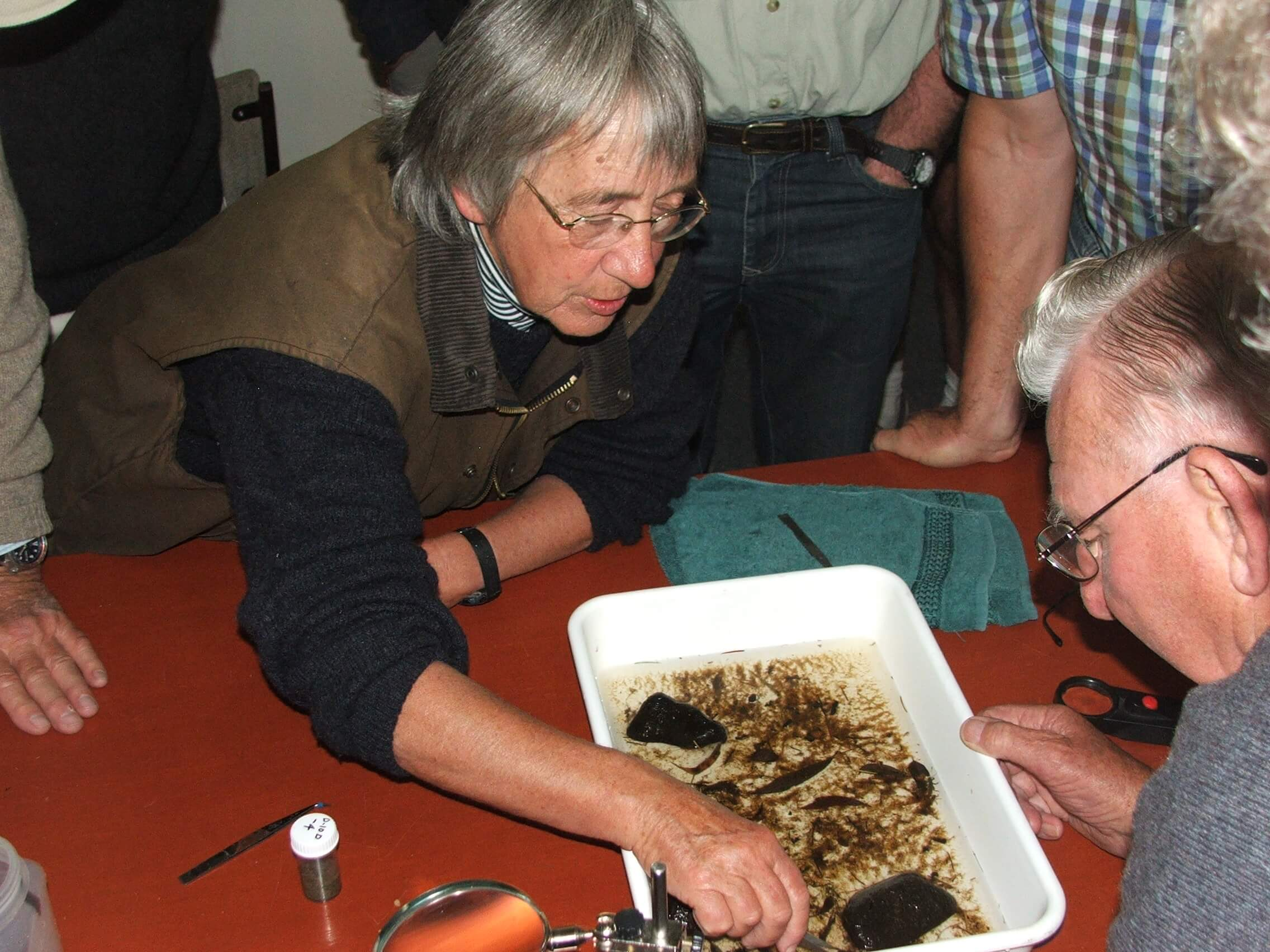 Annette Walker pointing out different species to Dennis Ealam.JPG