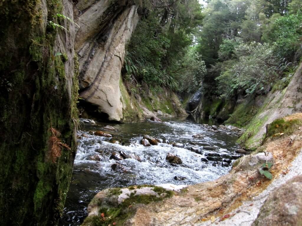 14 Noveber 2010 club trip wangapeka river 009.JPG