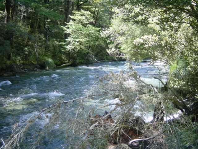 Travers River 005.jpg