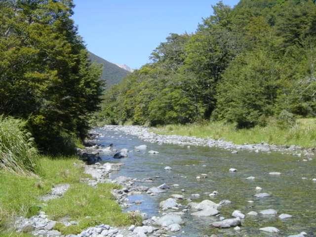 Travers River 006.jpg