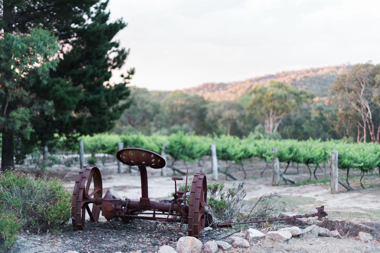 Aventine Winery - Hannah Puechmarin