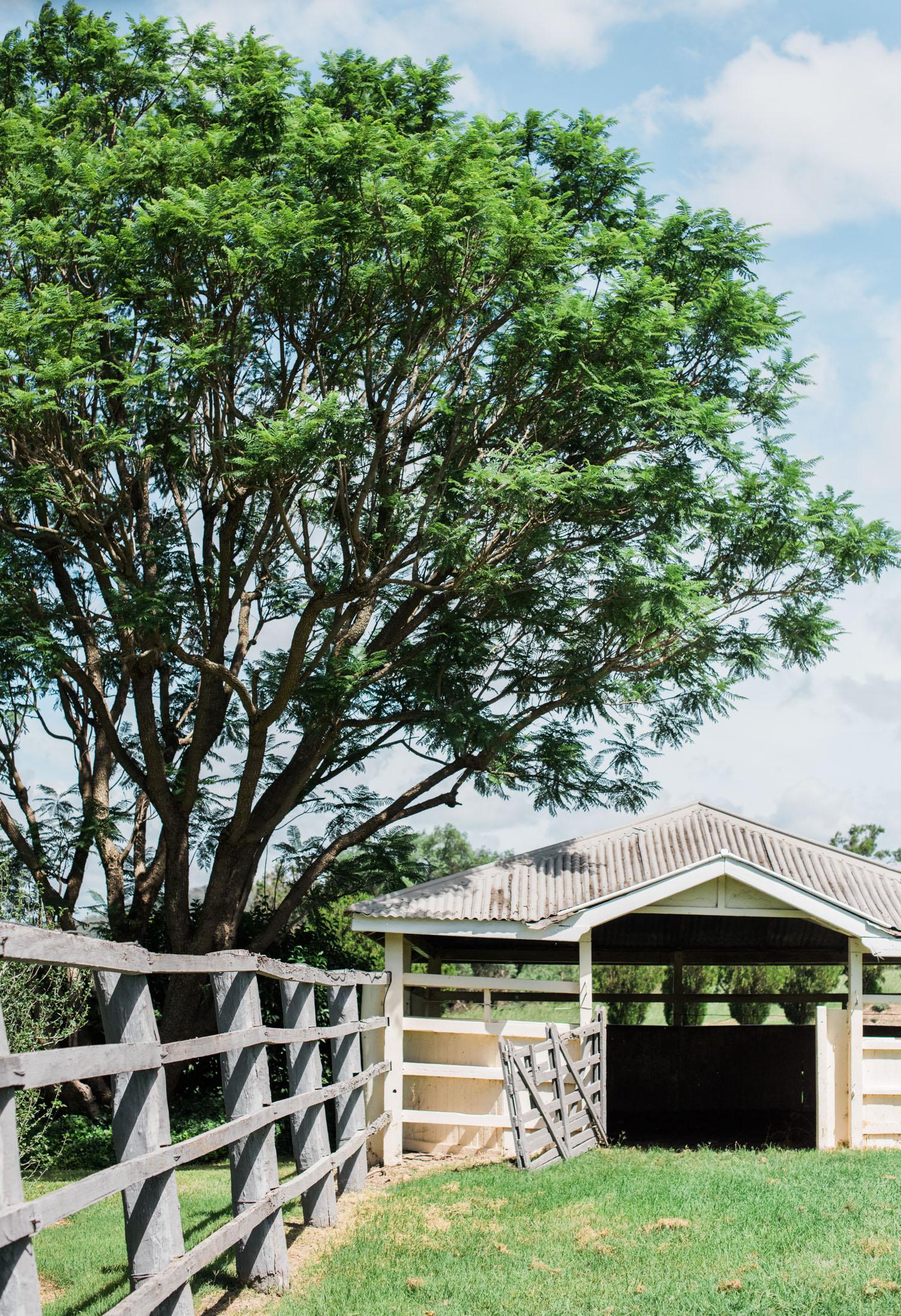 hannahpuechmarin-historic-home-harrow-house-4.jpg