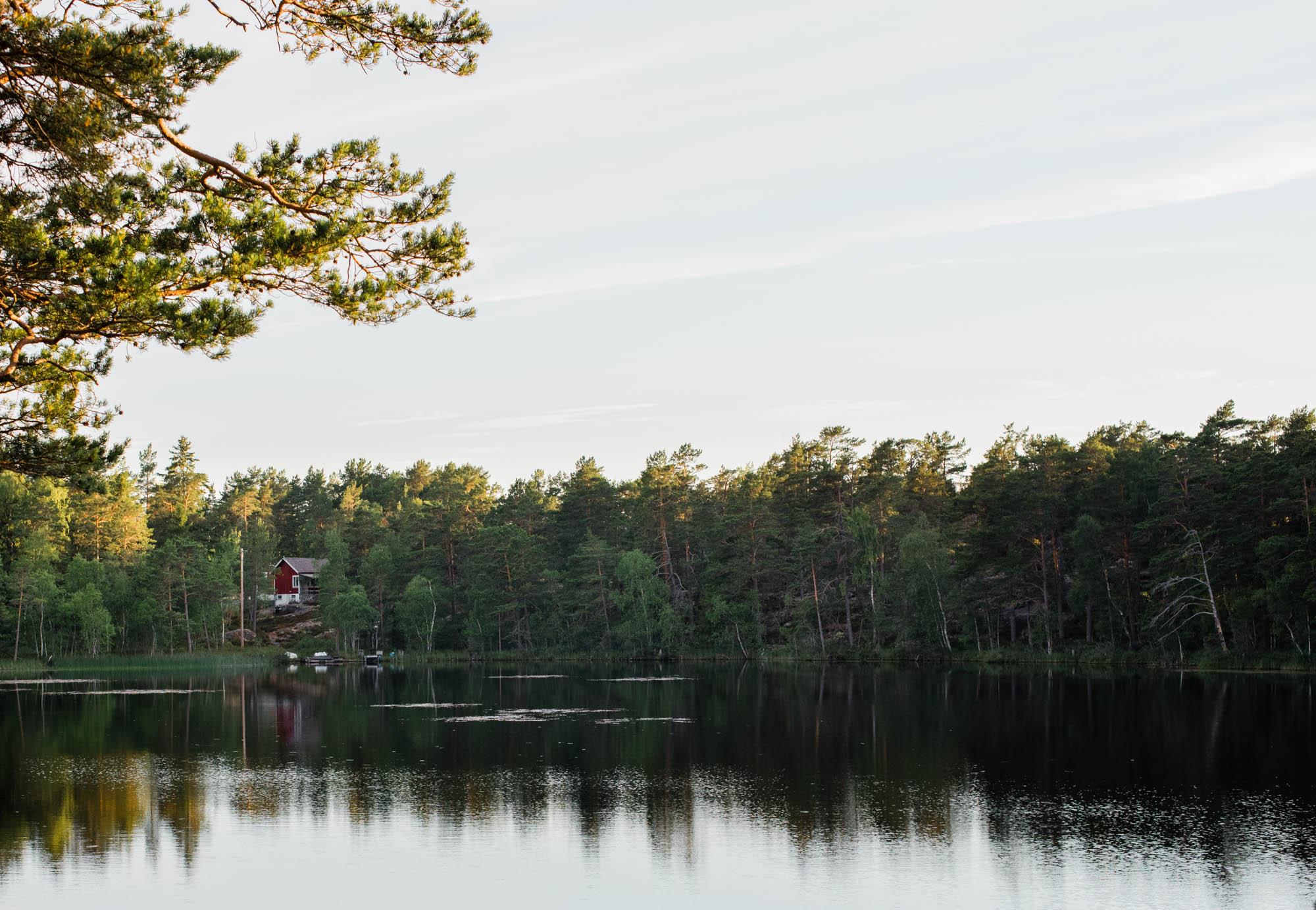 Web-hannah puechmarin-sweden-9184.jpg
