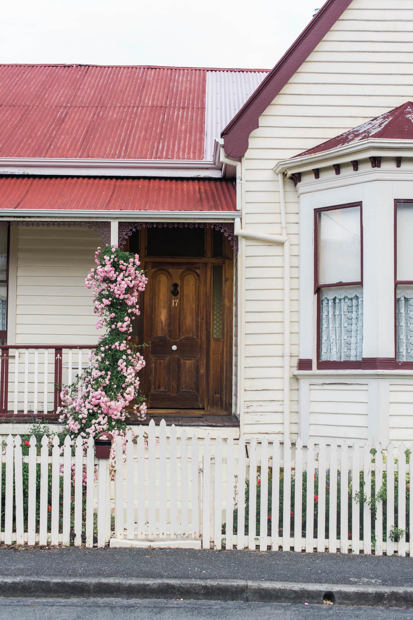WEB-hannah puechmarin-tasmania photographer-7883.jpg