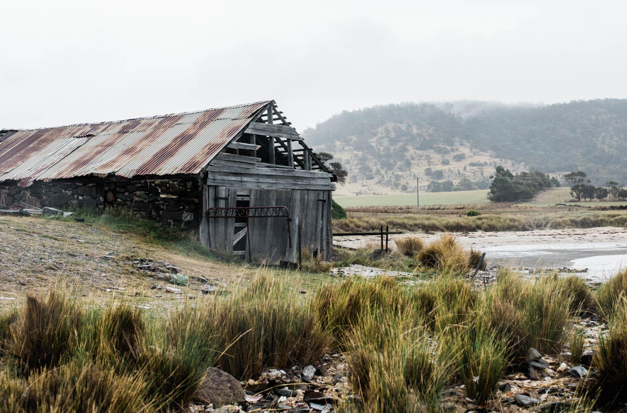 WEB-hannah puechmarin-tasmania photographer-8073.jpg