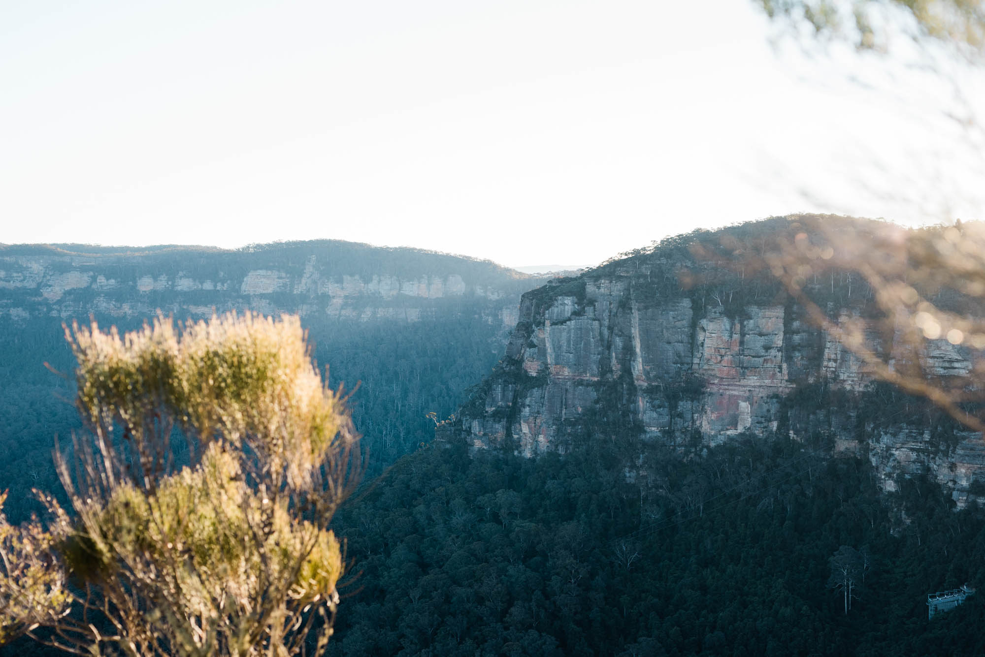 IG-blue mountains-0135.jpg
