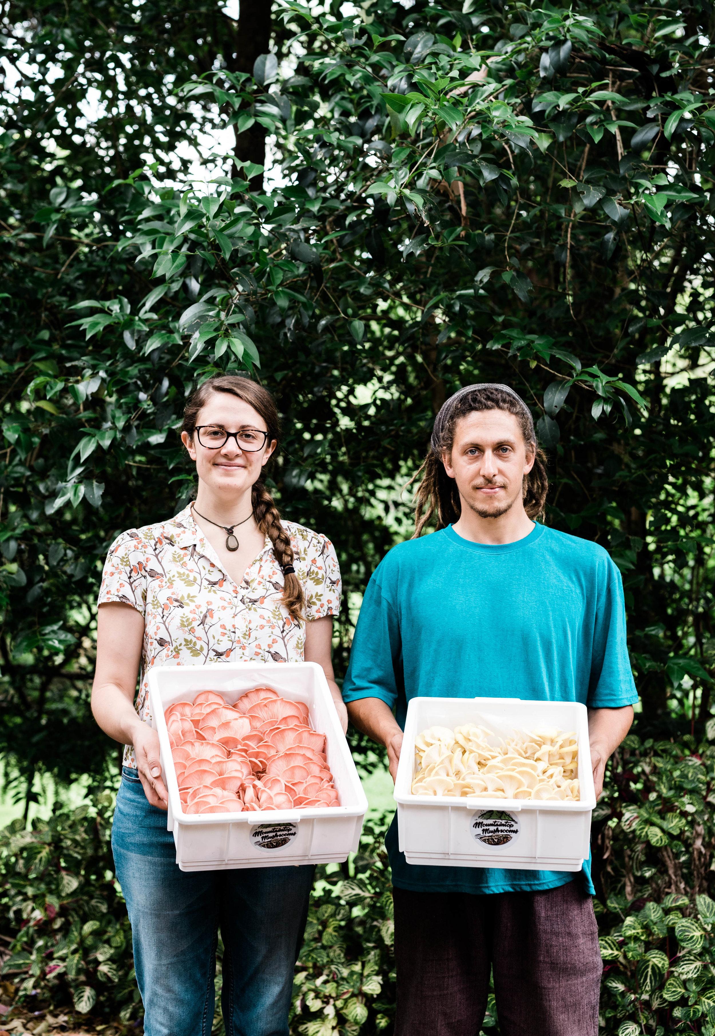 WEB-hannah puechmarin-WWFF-mountaintop mushrooms-6641.jpg
