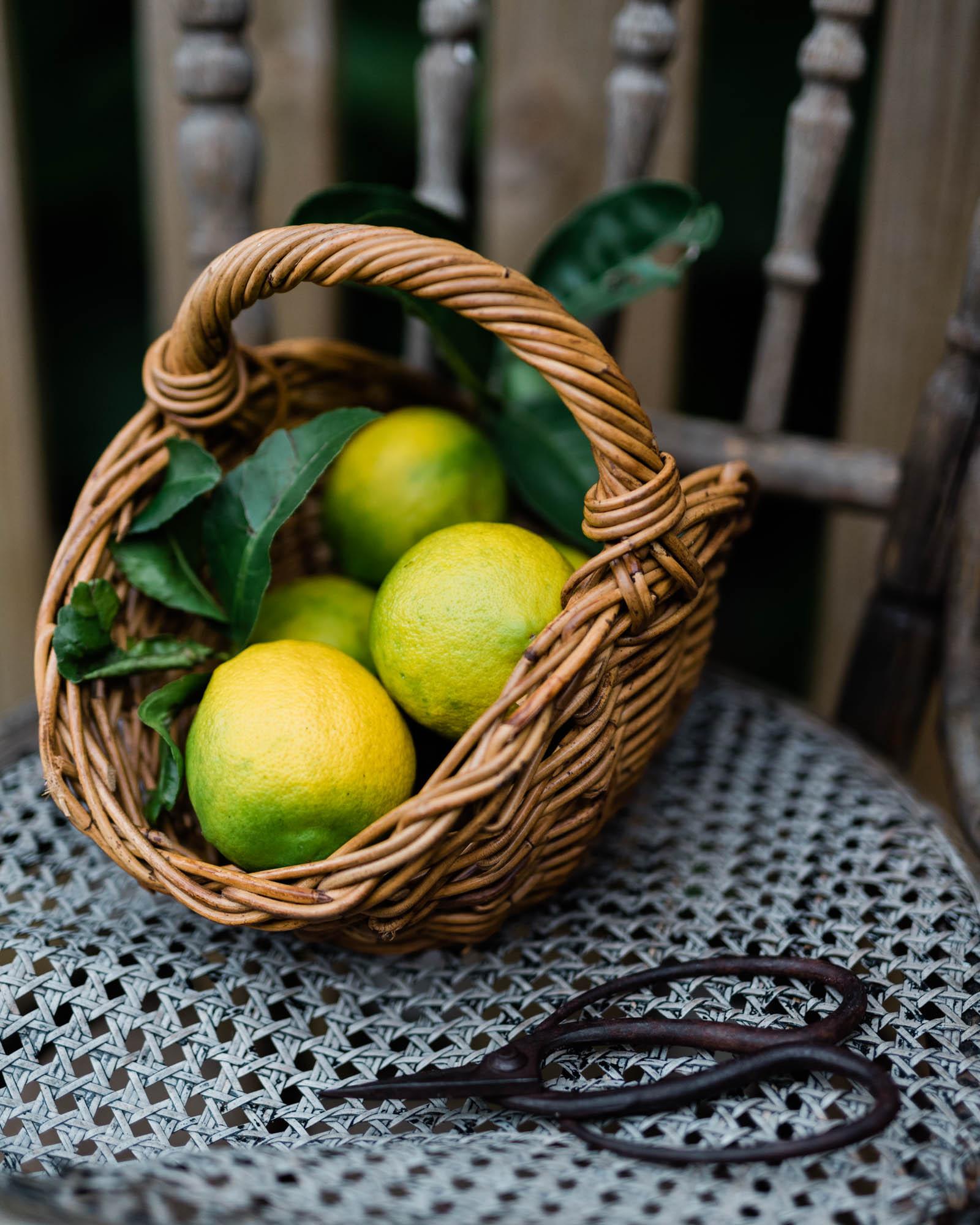 IG-lemons-5832.jpg