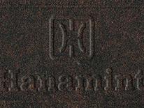 Desert Bronze