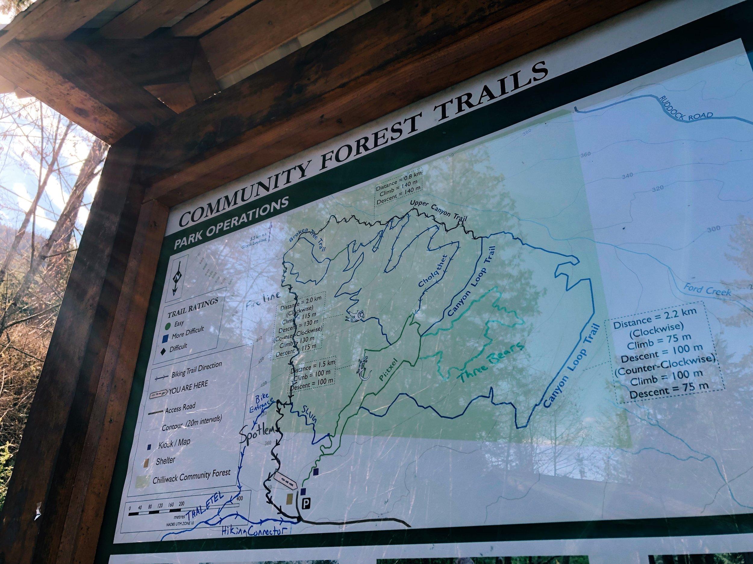 Chilliwack Community Forest_2.jpg