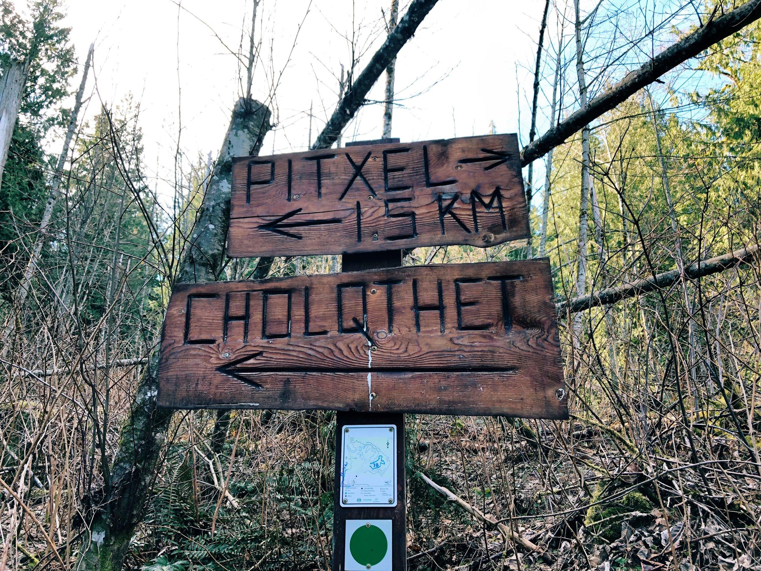 Chilliwack Community Forest_4.jpg