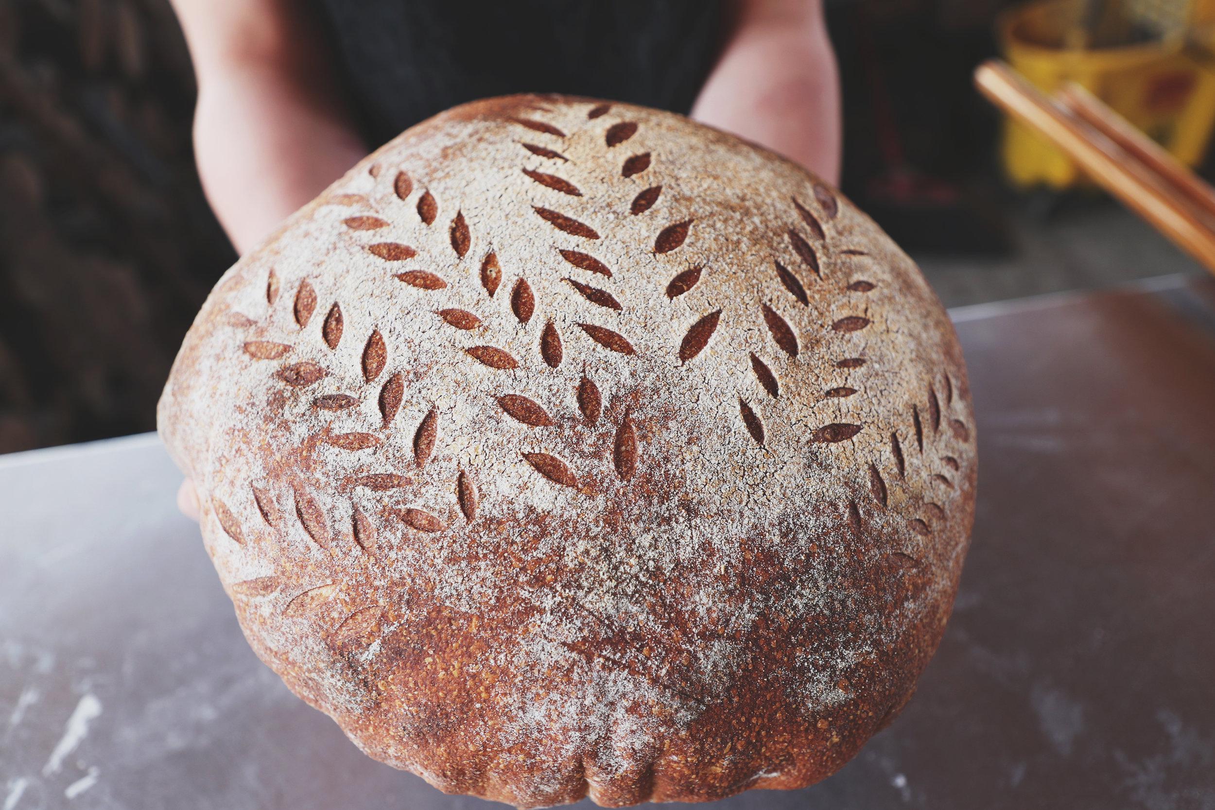 Local-Harvest-2.jpg