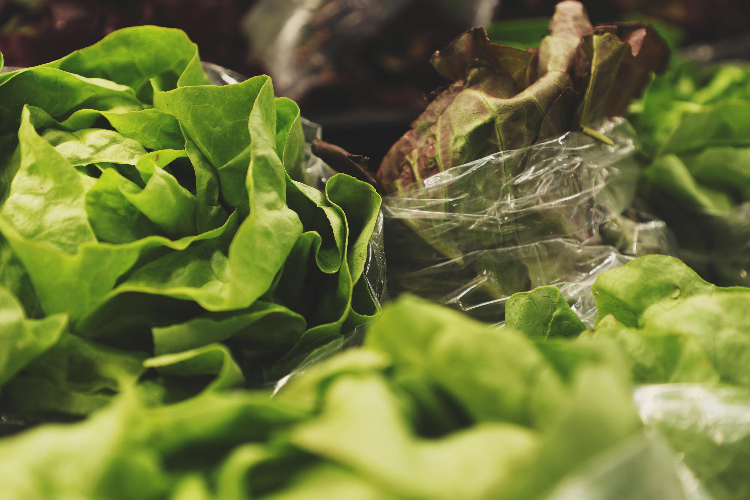 Local-Harvest-4.jpg
